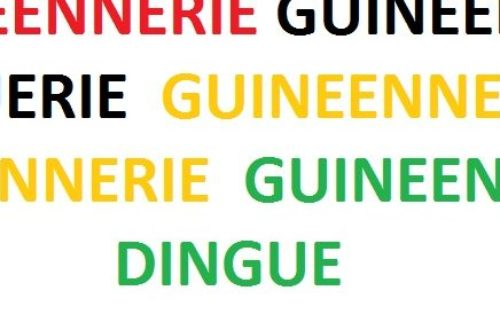 Article : Des guinéenneries